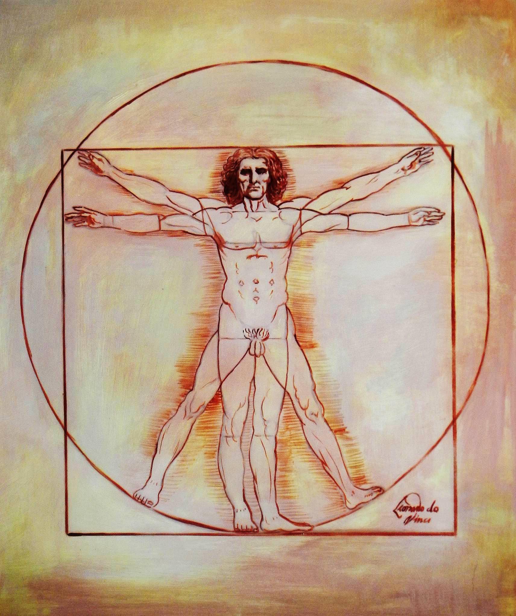 Leonardo da Vinci - Proportionsstudie c93889 50x60cm handgemaltes Ölgemälde