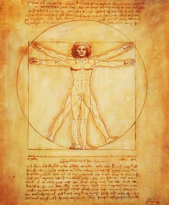Leonardo da Vinci - Proportionsstudie c92593 50x60cm handgemaltes Ölgemälde