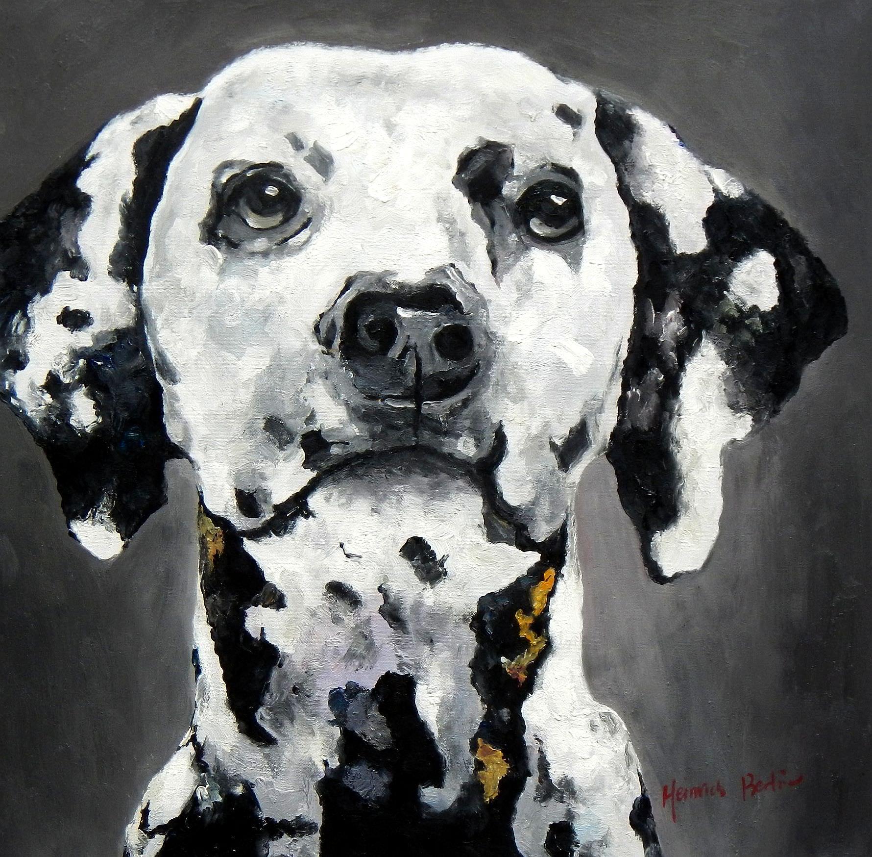 Modern Art - Dalmatiner e95787 60x60cm beeindruckendes Ölbild