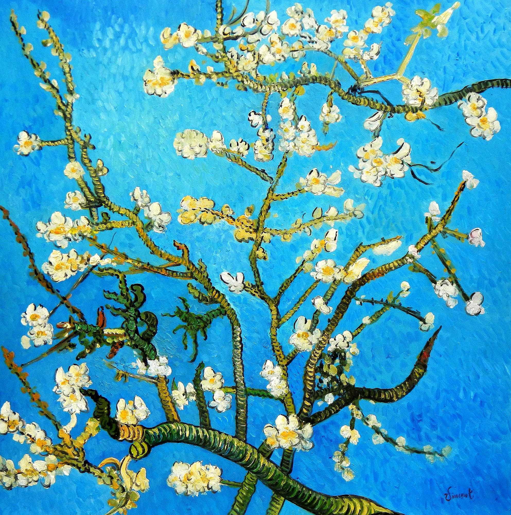 Vincent van Gogh - Äste mit Mandelblüten m95958 120x120cm Ölbild handgemalt